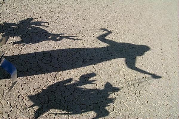 http://jon.luini.com/images/bman99/P0000495-tammy_birdshadow.jpg